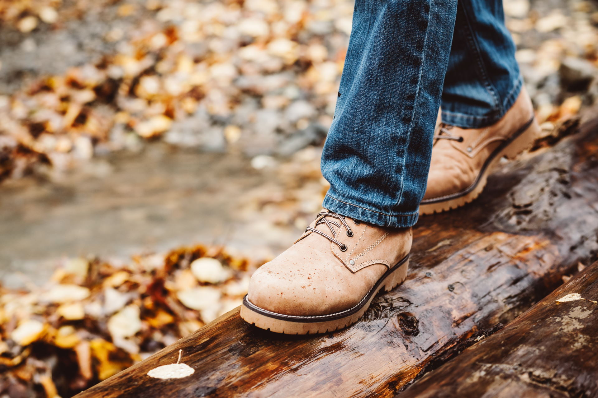 Hiker wearing boots walking across river in autumnal forest. Footwear on man's legs closeup outdoor. Male seasonal shoes.
